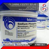 Sodium Phosphate Monobasic Monohydrate 500 g (BIOWORLD)