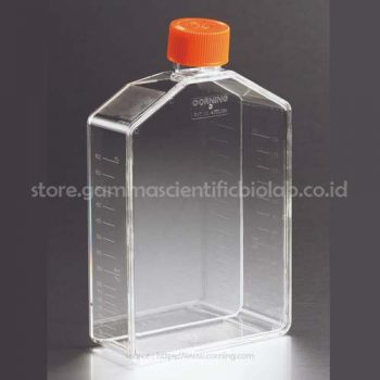 175cm² Angled Neck Cell Culture Flask with Vent Cap