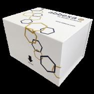 Glutathione Elisa Kit 96T