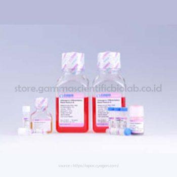 Mesenchymal Stem Cell Adipogenic Differentiation Medium-1 kit
