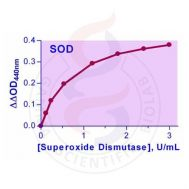 EnzyChrom Superoxide Dismutase Assay Kit (-20C)