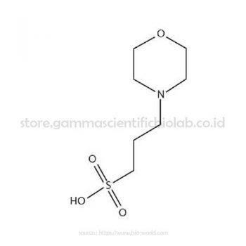 MOPS Free Acid 100G (BIOWORLD)